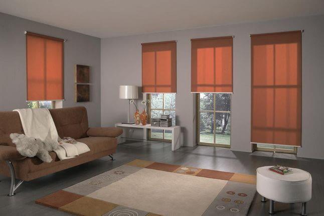 Что лучше ролеты или рулонные шторы?
